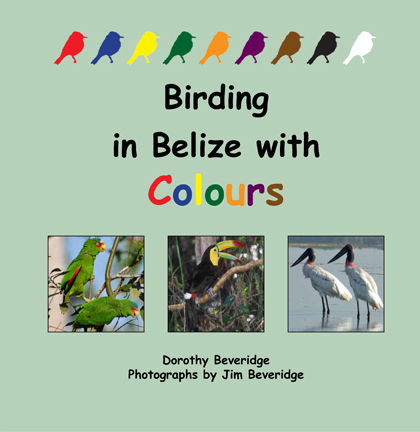 Birding with Colours